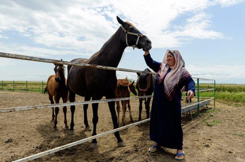 وزیر ورزش برای کشف حقیقت توهین به ترکمن صحرا اقدام کند