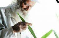 پدر طبیعت ایران درگذشت